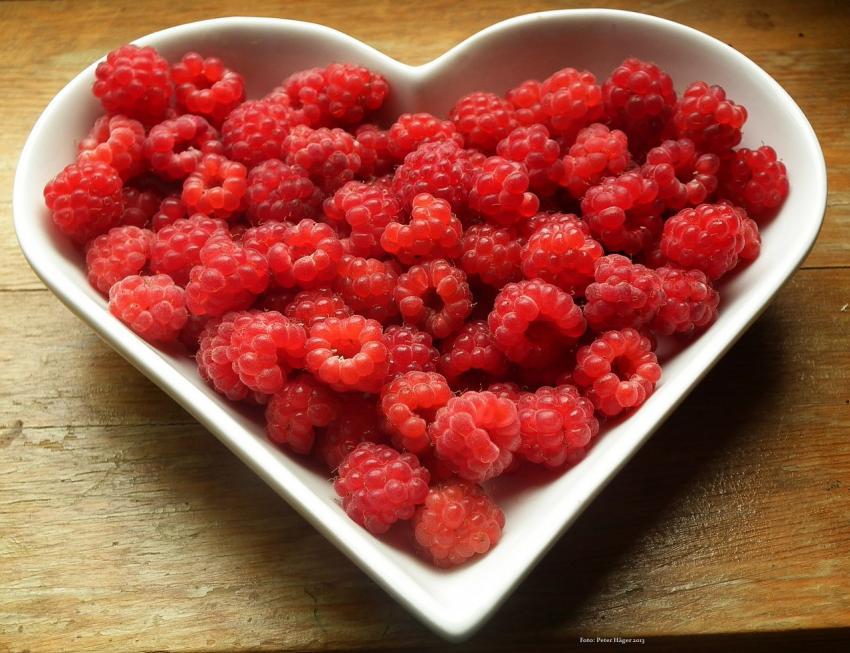 Cómo perder peso tomando fruta en ayunas